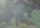 ss-Sims-3-Reiseabenteuer-China-007