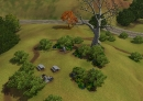 historisches-wahrzeichen-galgenbaum-01