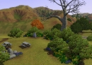 historisches-wahrzeichen-galgenbaum-02